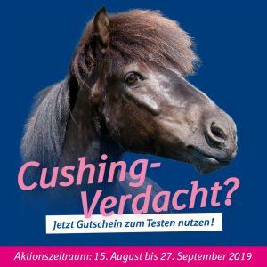 Pferd, Cushing, Equines Syndrom, ECS, Pferdeerkrankungen, Gutschein, Boehringer